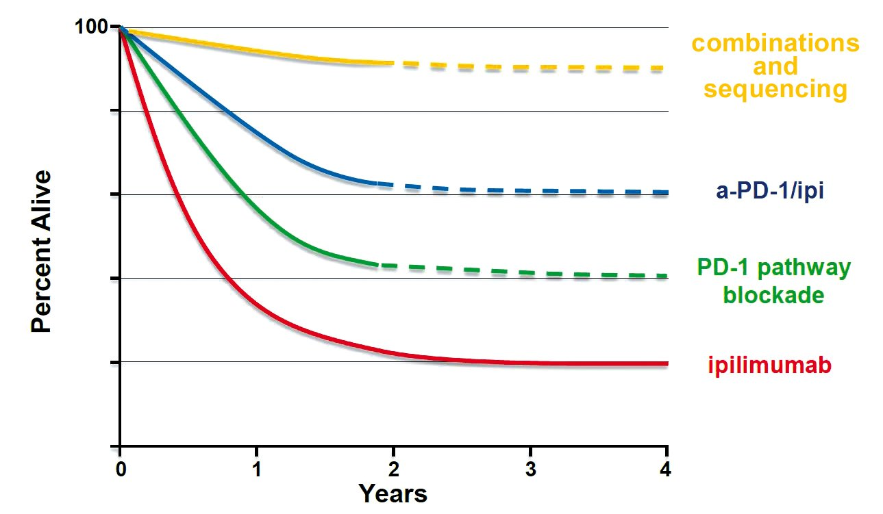 Combinations of checkpoint inhibitors could see long-term survival rates of up to 60% in some cancers, while the hope is that clever combinations and sequencing could raise this to 80% and beyond. However, this is not yet within grasp Adapted from Walter J Urba, ASCO 2013