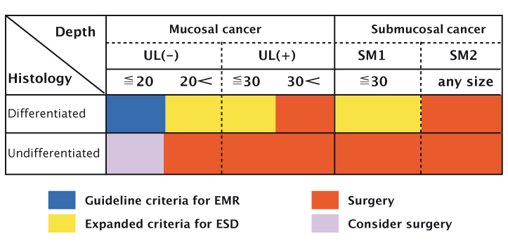 The risk for lymph node metastasis in gastric cancer Source: T Gotoda, H Yamamoto and RM Soetikno (2006) J Gastroenterol 41:929–942 Reprinted with permission of Springer